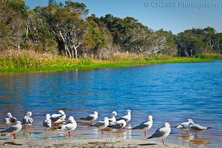 Teatree Lake, Lennox Head, Australia