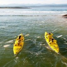 Sea kayaking in Plettenberg Bay, Garden Route with Dolphin Adventures. Dolphin Adventures in Plettenberg Bay offers guided sea kayaking trips. Ecotourism means seeking out wild and scenic areas (like our mother ocean) for active and educational tours that benefit the environment, the visitors and the people who live in the area. That makes Dolphin Adventures perfect ecotourism. #dirtyboots #kayaking #plett #southafrica