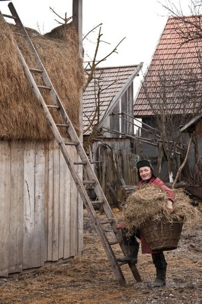Romanian rural life .România e patria noastră, a tuturor românilor. E România celor de demult şi-a celor de mai apoi. E patria celor dispăruţi şi a celor ce va să vie.