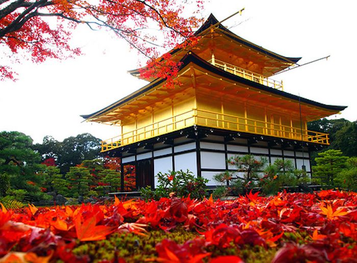 "Kinkaku-ji means ""The Golden Pavilion"". It is a three-story building located in Rokuon-ji Temple."