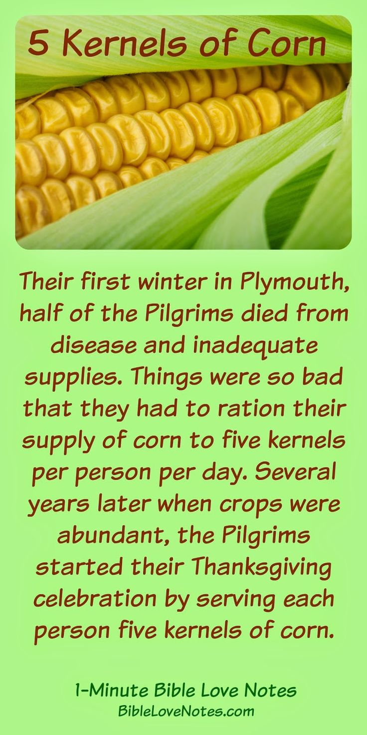 True Thanksgiving Story: an early Thanksgiving really inspires gratitude and reminds us of our blessings. When faced with terrible hardship, the Pilgrims never lost their gratitude attitude. Read the 1-minute devotion for more details.