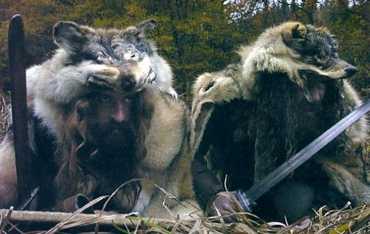 """Úlfhéðnar were Viking """"wolf warriors"""" who wore wolf skins the way Berserkers wore bear skins. Both of these types of """"special forces"""" warriors were capable of performing feats far beyond the abilities of normal people. They were completely fearless and greatly feared because it was said they were possessed by the animal whose pelt they wore and no blade could harm them."""