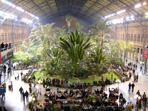 Atocha Station, Madrid  With the opening of a new terminal in 1992, locals had the inspired idea to convert the original adjacent station into a concourse with a beautiful tropical garden of palm trees reaching toward the steel and glass roof in the center—as well as a nightclub and several cafés. The new station is accessed through the old terminal, where passengers can buy tickets and wait for their trains.