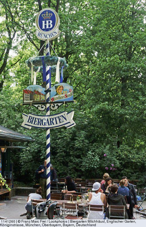 Good Beer garden Milchhaeusl Englischer Garten Koeniginstrasse Munich Upper Bavaria Bavaria