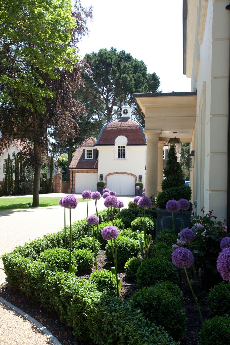 Purple #alliums highlight an elegant #landscape in this #coastal style home