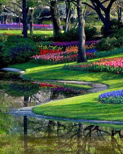 ☀Silence of Tulip garden by shinichiro*,