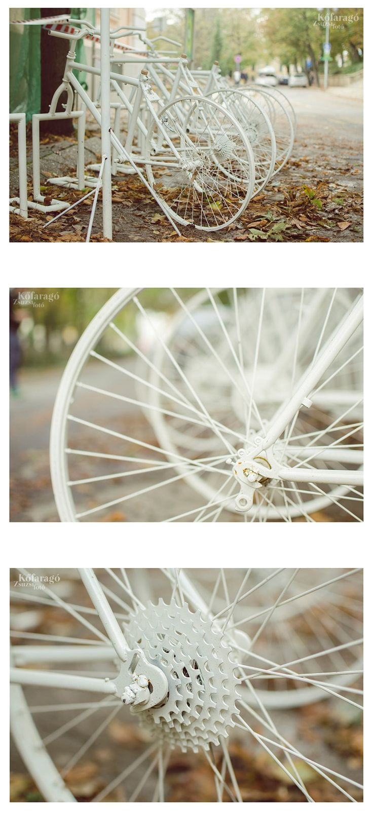 white bicycle by kofaragozsuzsiphotos  www.facebook.com/kofaragozsuzsiphotos
