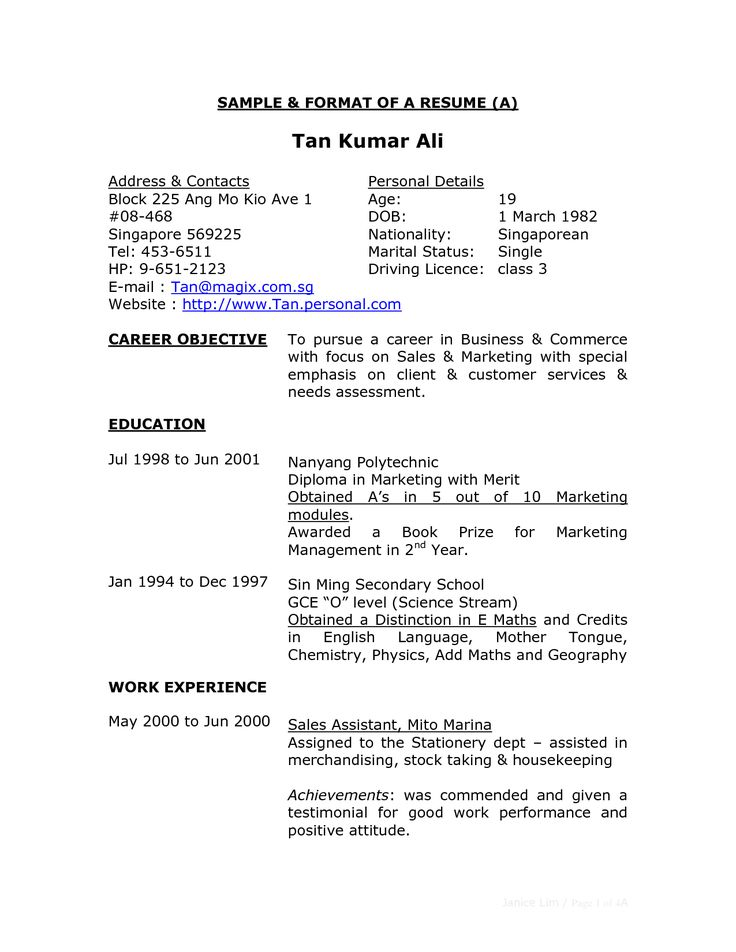 Simple Examples Of Resumes  Resume Examples And Free Resume Builder