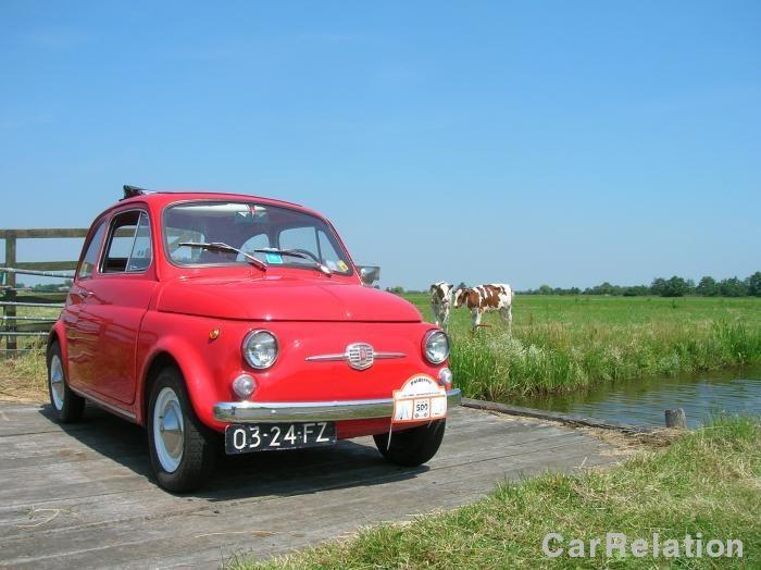 Fiat 500 F Nuova 1968 - color red - Dutch landscape and cows ;-) #fiat #classiccar #carrelation