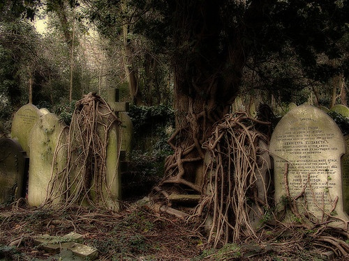Highgate Cemetery(England); the most gorgeously gothic Victorian wonder in the world.: Cemetari, Haunted House, Haunted Places, Highgat Cemetery, Graphics Deathhauntingscari, Haunted Beautiful, Graveyards, Old Cemetery, Mothers Natural