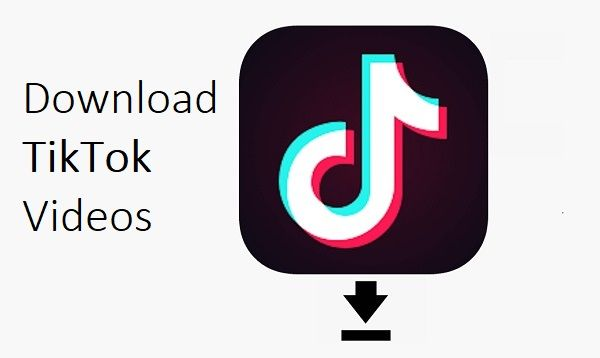 Download TikTok Videos | Video downloader app, Download app, Download video