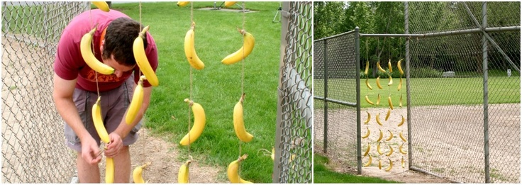 """Banana """"curtain"""". Perfect for curious george party!"""