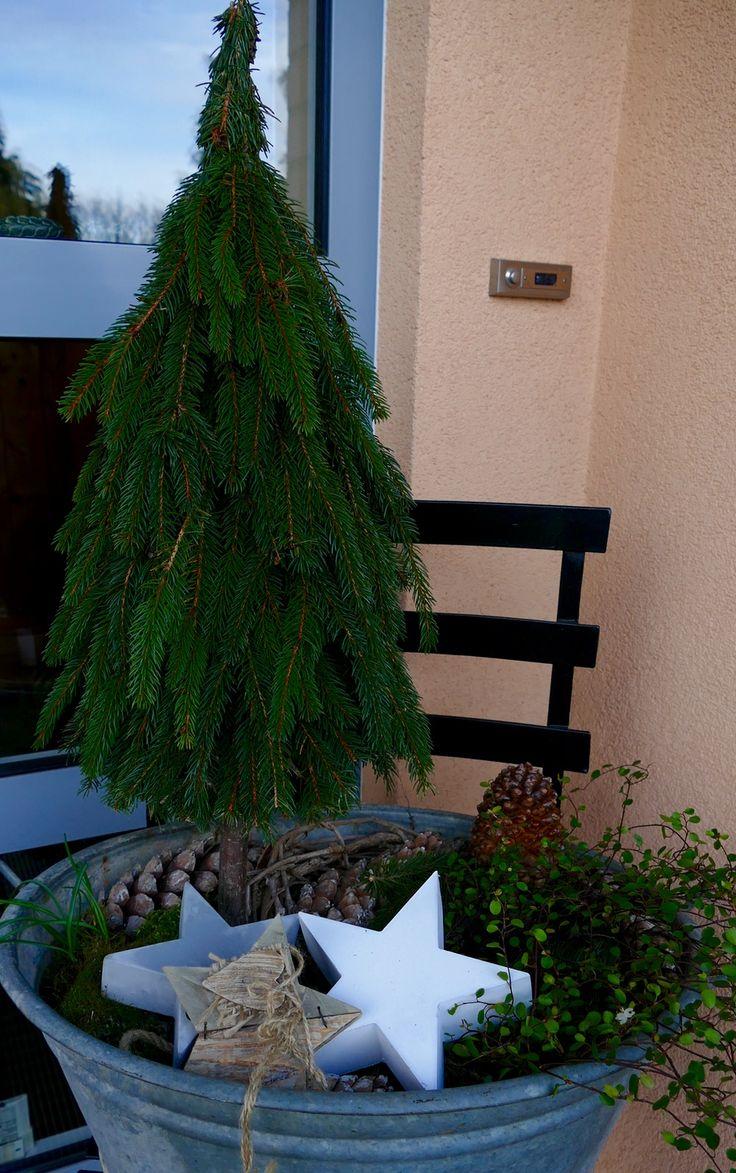 b ume aus tannenzweigen binden xmas christmas tree and outdoor christmas. Black Bedroom Furniture Sets. Home Design Ideas