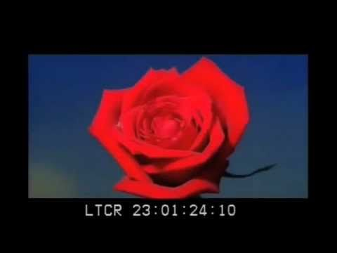 LANA DEL REY - CARMEN  The official video of her last single, made public on 21st of April 2012  http://www.postmodern.ro/articol/cautarea-inspiratiei