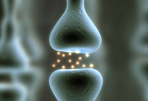 Este Neurotransmisor es la Clave de la Espiritualidad y de la Conciencia Superior – Neuro Emocional