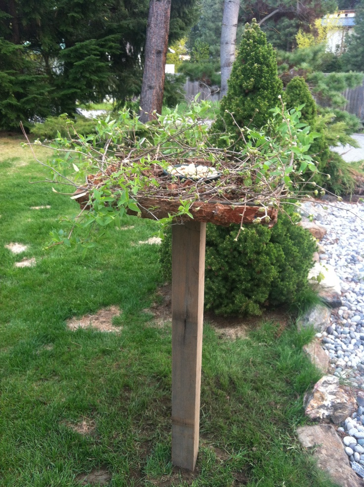 How to make a birdfeeder out of recycled materials for Making a bird feeder out of recycled materials