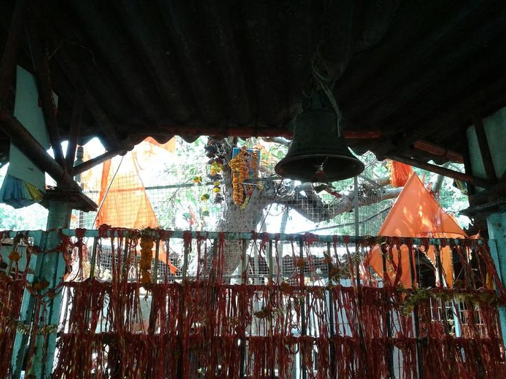 The Audumber (Banyan) tree, near the sangam of rivers Bhima & Amaraja, where Shri Gurudev Datta Maharaj had appeared! - 30 December, 2012