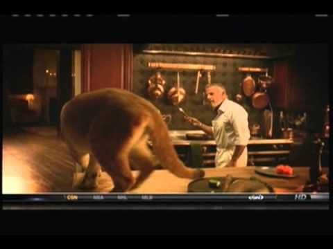 """Dos Equis Commercial-Most Interesting Man in the World-I love all of these commercials but the part where his """"cat"""" jumps on the kitchen counter is the best!"""