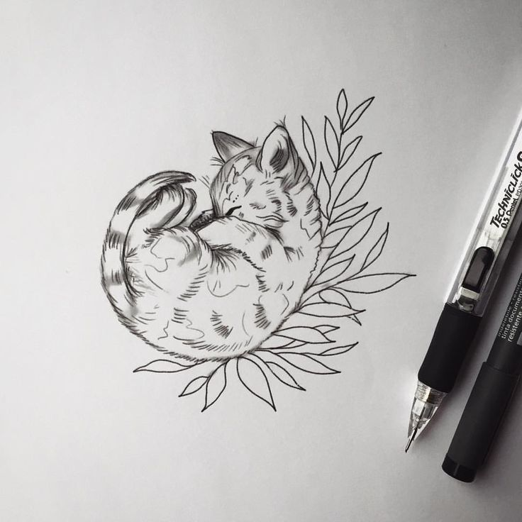 Image Result For Cat With Flower Tattoo Tatouage Chat Tatouage De Chat Dessin Chat