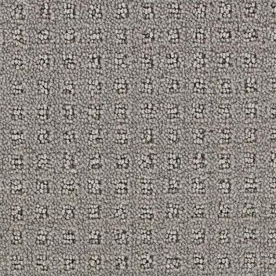 Springwood Cement Gray - 6 in. x 9 in. Take Home Carpet Sample