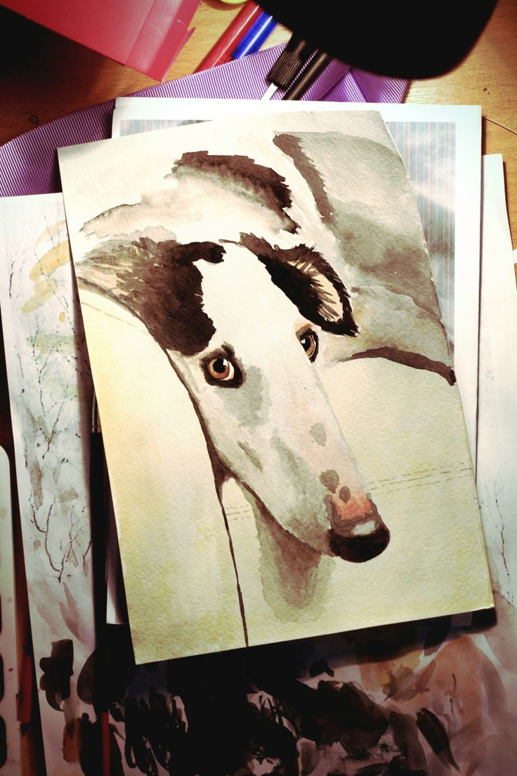 russian borzoi watercolor
