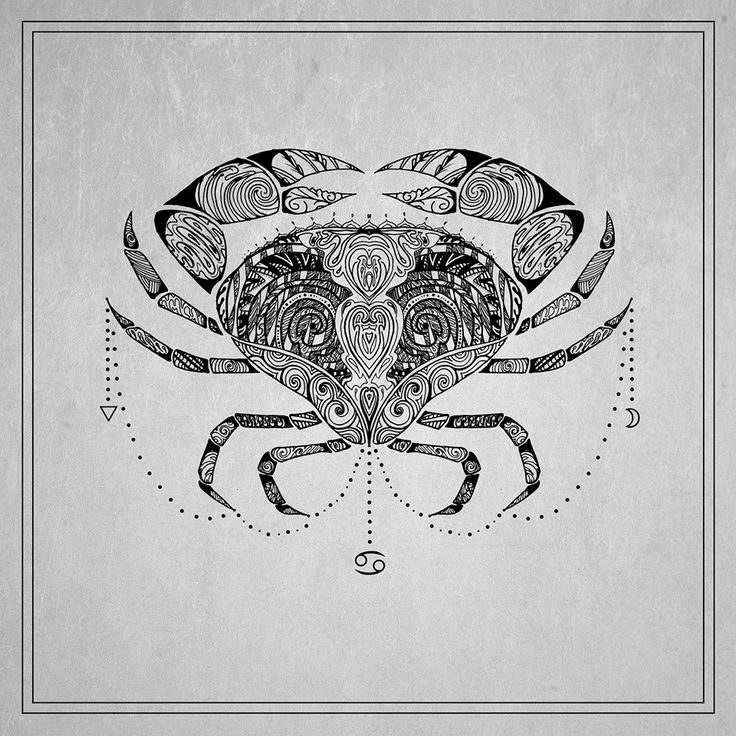 Cancer the Crab | Moon Child ♋ Cancer ♋ June 22nd - July 22nd ☪