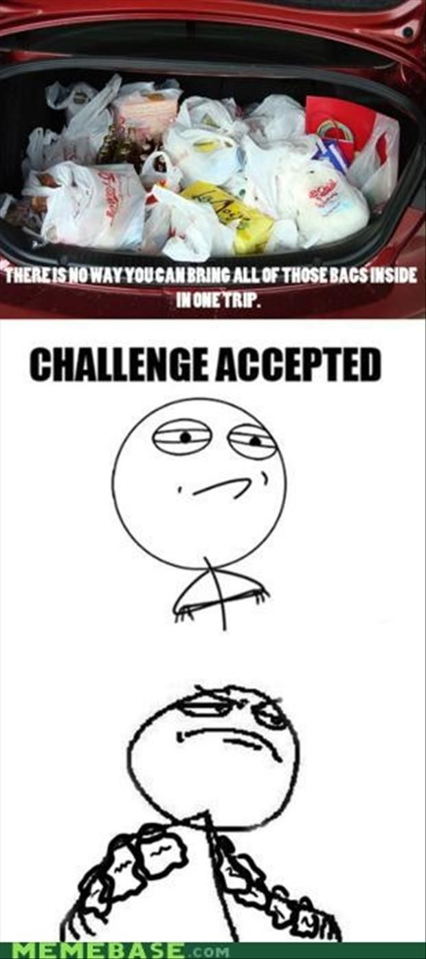 """The Best Of, """"Challenge Accepted"""" – 30 Pics"""