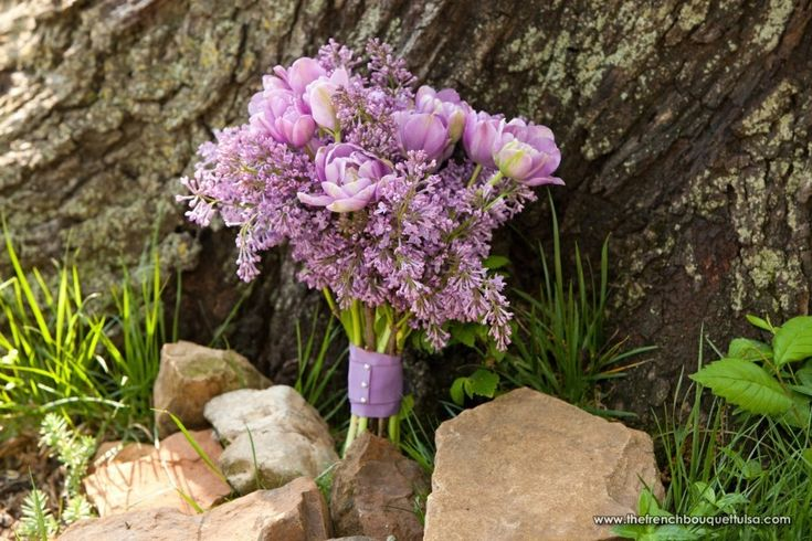 Beautiful Lilac and Lavender Tulip  Bridal Bouquet -   Petite Fleur by The French Bouquet - Artworks Tulsa Photography