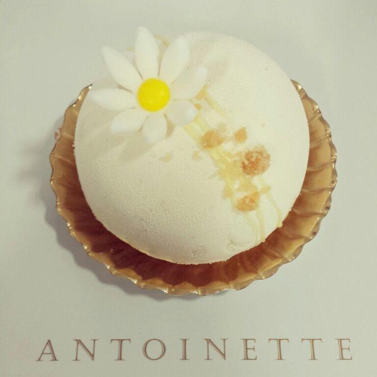 Chloe - Yuzu cremeux, white chocolate vanilla mousse, light sponge cake, almond sable.