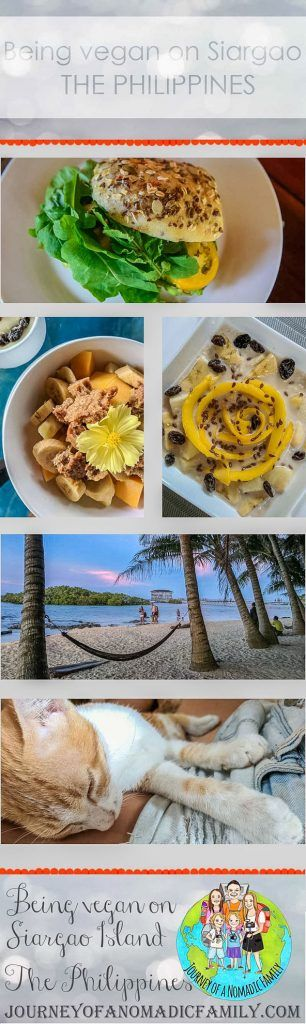 Want to know where to buy and eat vegan and vegetarian food on Siargao Island in The Philippines? Then you need to read this post to find out our top spots.