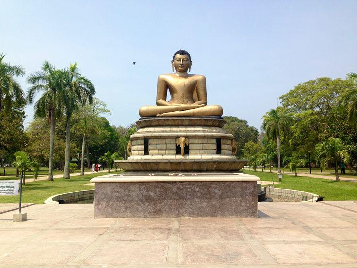 Buddah Statue - Victoria Park, Sri Lanka