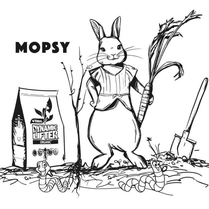 Peter Rabbit Movie Sketch Mopsy Coloring Pages Peter Rabbit Movie Cartoon Coloring Pages Bunny Coloring Pages