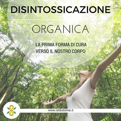 La disintossicazione organica è la prima vera forma di cura o di attenzione verso il nostro corpo, pulizia interna allo scopo di liberare l'organismo da ciò che ci disturba o avvelena.