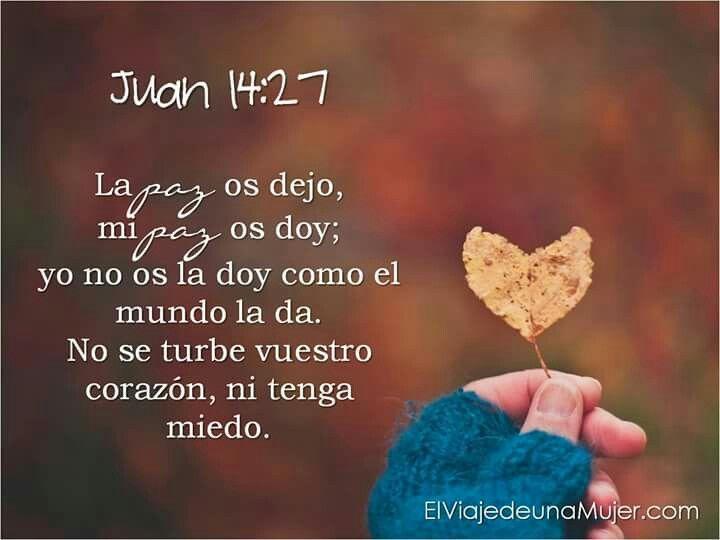 Juan 14:27 La paz os dejo, mi paz os doy; yo no os la doy como el mundo la da. No se turbe vuestro corazón, ni tenga miedo.♔
