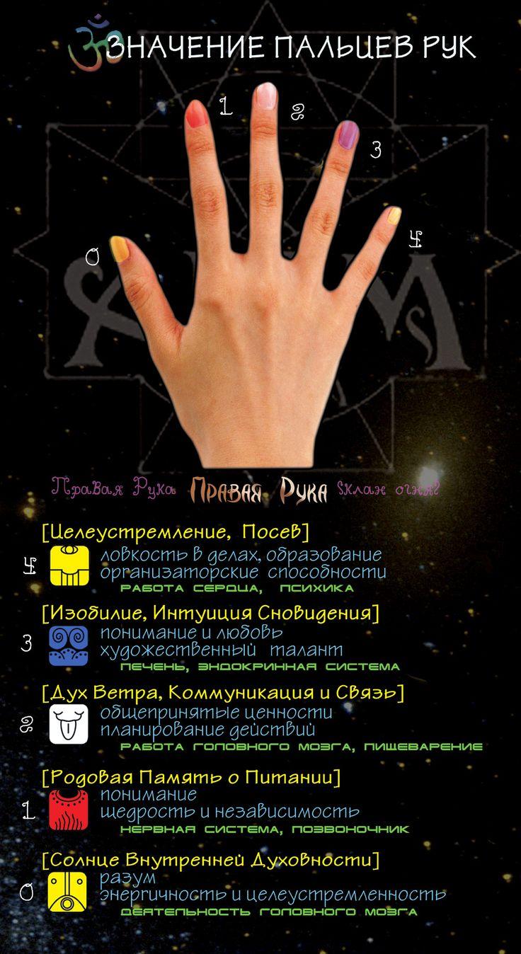 Значение пальцев рук и их энергия