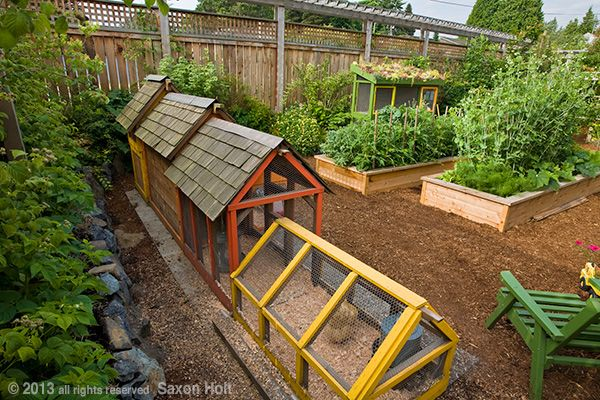 These colorful chicken coops and the raised beds are a crucial element of this small space - Small space farming image ...