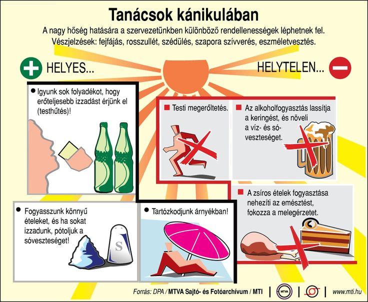 Tanácsok kánikulában | Fotó: MTI - PROAKTIVdirekt Életmód magazin és hírek - proaktivdirekt.com