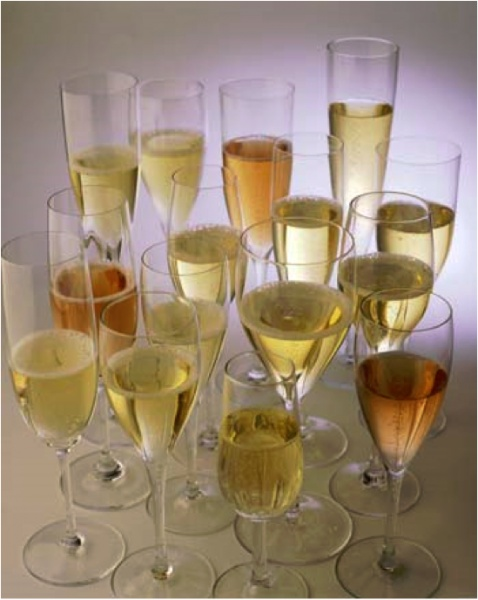 Champagne. Yum. The Champagne region in France has so much to offer for fantastic vacations!