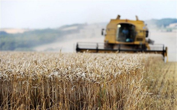Food inflation fears as US crop prices surge.