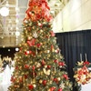 Red, Silver, and Gold Christmas Tree: Gold Christmas Tree, Traditional Christmas Tree