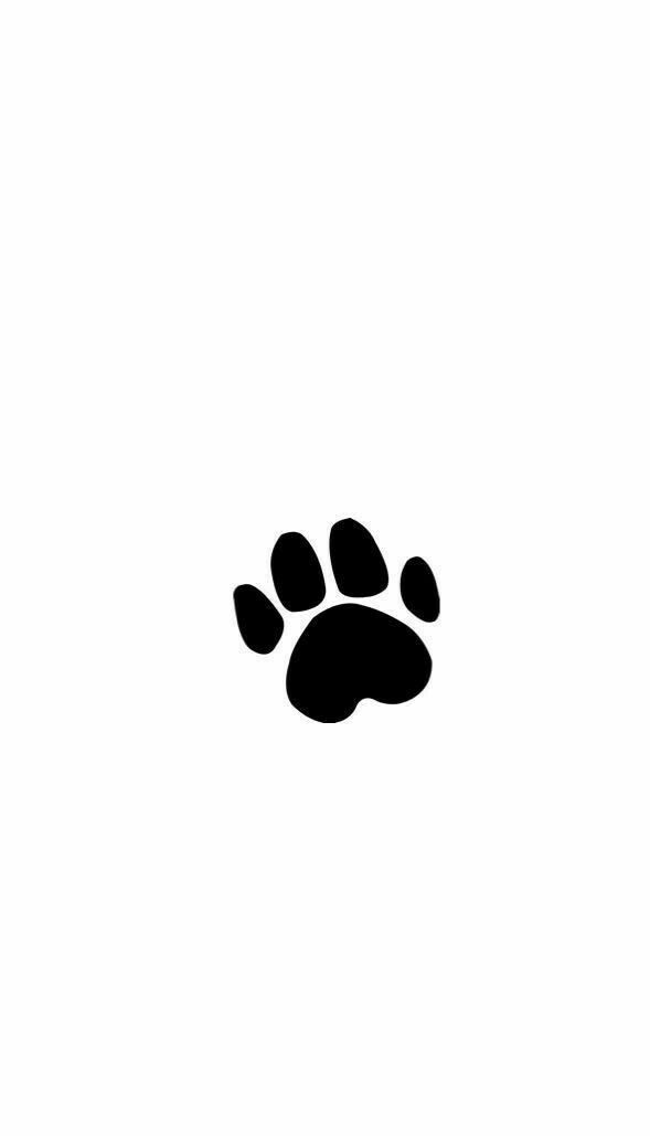 Pin By Natural Pro On Wallpaper Dog Wallpaper Iphone Paw Wallpaper Paw Print Background