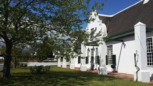 Cape Dutch style house in Stellenbosch - always close to an oak tree and never out of sight of a mountain!