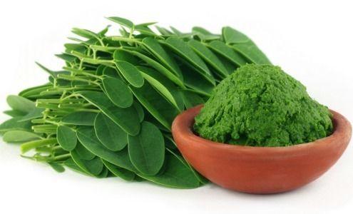 Moringa: Un súper alimento lleno de nutrientes que debes probar
