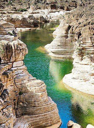Socatra island - Yemen