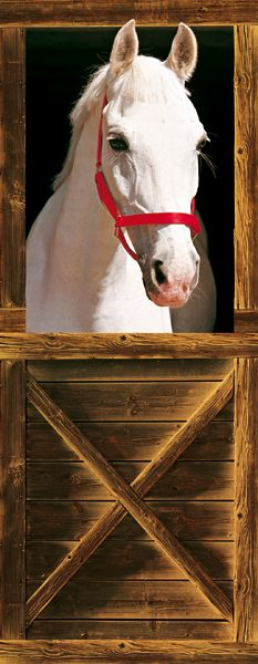 Stabled Horse Door Mural, I had this on my bedroom door as a child