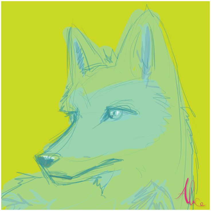 FOX by Pulce90.deviantart.com on @DeviantArt