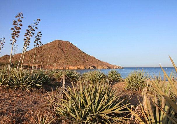 Ya sí podemos decir que Genoveses ha sido elegida como la mejor playa de España 2015…  #almeria #almeriatrending #almeriense #playa #mejorplaya2015 #almeria_trending #soydealmeria #mediterraneamente #orgulloalmeriense