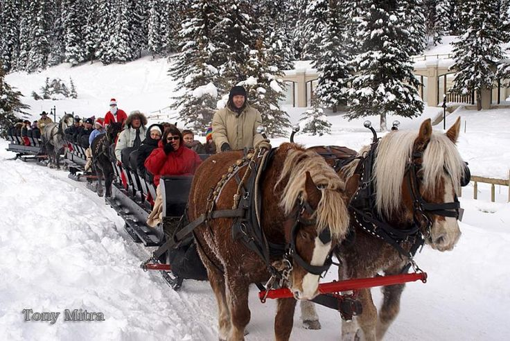25+ Best Ideas About Sleigh Rides On Pinterest