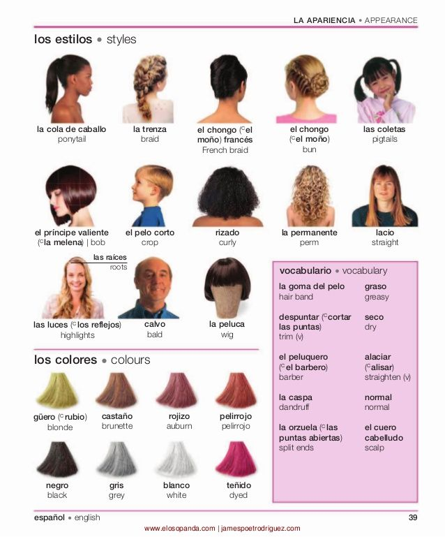 hair styling terms 39 best images about hairdressing on simple 1260