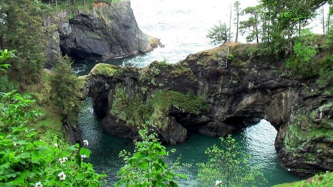 Boardman State Park, Oregon by Rick McCharles via WIkimedia Commons This is the picture of a fragile natural bridge overlooking a cove and surrounded by old sitka spruce trees. Learn more about this park on this page: Oregon State Parks.